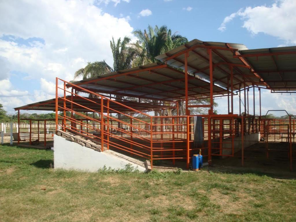 DE OPORTUNIDAD FINCA DE 634 HECTÁREAS CON GANADO